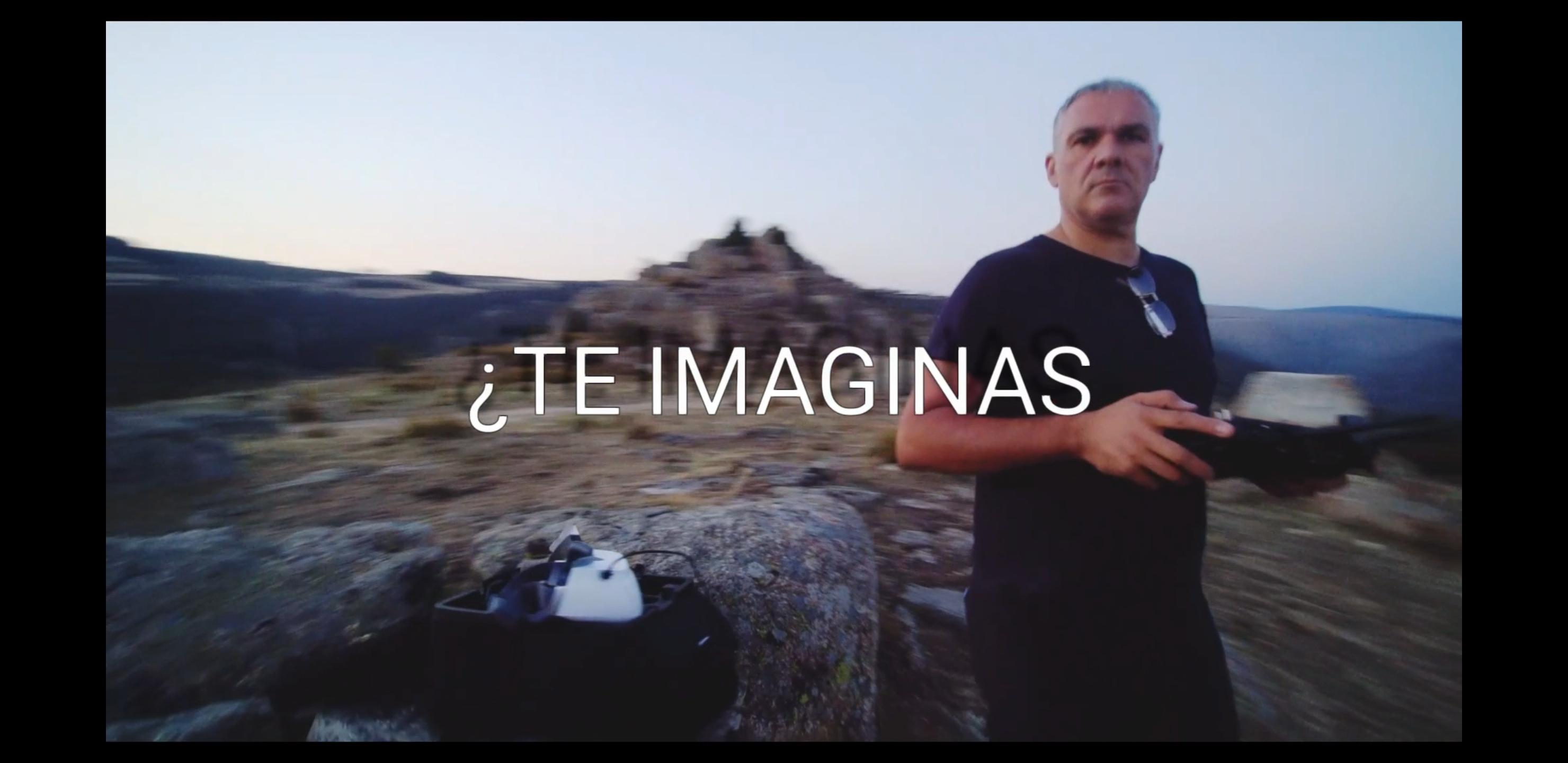 TE IMAGINAS…